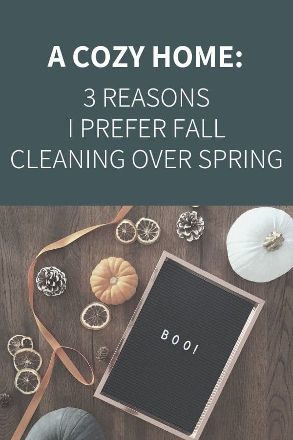 Blog Image: 3 Reasons to Clean Best in the Fall