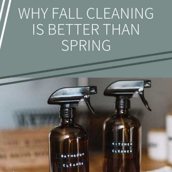 Blog title image: Spring Cleaning vs Fall Cleaning